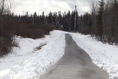长期在雪的被铺的足迹 免版税库存照片