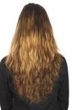 长期女孩头发年轻人 免版税库存图片