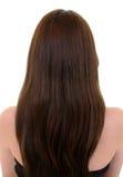 长期棕色头发 免版税库存图片