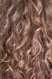 长期棕色头发 库存照片