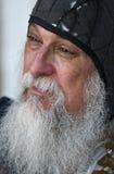 长期胡子白色 库存图片