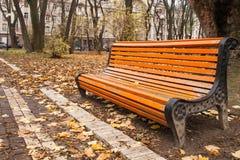 长木凳在公园在秋天 库存图片