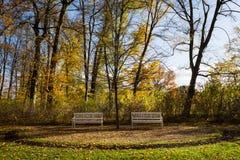 长木凳在公园 免版税库存照片