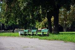 长木凳在公园 免版税库存图片