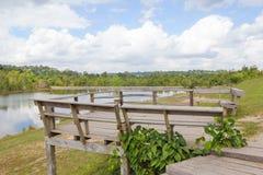 长木凳在国家公园 免版税库存照片