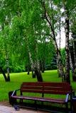长木凳在城市公园 两足动物 库存照片