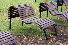 长木凳在城市公园 美好的表单 免版税库存照片