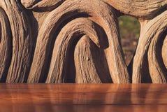 长木凳在夏天公园 特写镜头 图库摄影