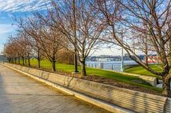 长木凳在日落的河沿公园 库存照片