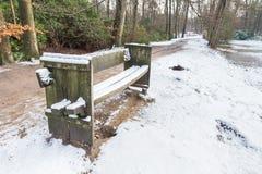 长木凳在有雪的森林里 免版税库存图片
