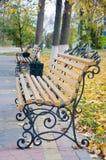 长木凳在秋天公园 免版税库存图片