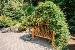 长木凳由竹子制成在有醉汉的一个美丽的夏天公园 库存照片