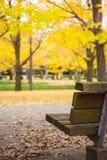 长木凳以黄色在秋天把银杏树叶子留在 免版税库存图片