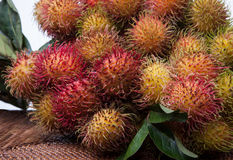 长毛的果子红毛丹印度尼西亚 免版税库存图片