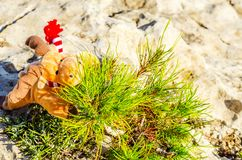 长毛绒在岩石的鲁道夫驯鹿,圣诞节假日的标志 库存照片