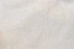 长毛绒织品米黄背景  库存照片