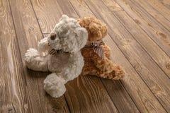 长毛绒玩具熊夫妇 库存照片