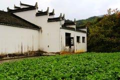 长溪村庄,惠州样式古老村庄在中国 免版税图库摄影