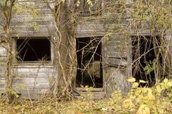长满的谷仓前 库存图片
