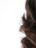长特写镜头的头发 免版税图库摄影