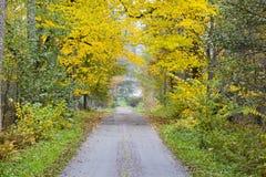 长的乡下路 库存图片