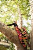 长的五颜六色的礼服的Boho女孩坐树在公园夏日 免版税库存照片