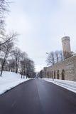 长的埃尔曼(Pikk埃尔曼)塔在塔林,爱沙尼亚 图库摄影