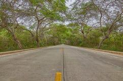 长的平直的高速公路 免版税库存图片