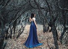 长的成套装备的年轻性感的女孩走在森林沼地的 库存图片
