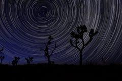 长的曝光星足迹在约书亚树国家公园 库存图片