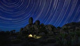 长的曝光星足迹在约书亚树国家公园 库存照片