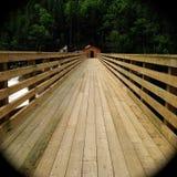 长的木桥在森林里 免版税库存照片