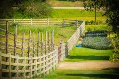 长的木篱芭透视图在绿色农场 库存照片