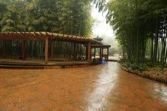 长的木走廊在植物园里 免版税库存照片