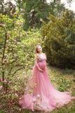 长的桃红色fattini礼服的怀孕的金发碧眼的女人接触腹部并且看天空 免版税库存图片