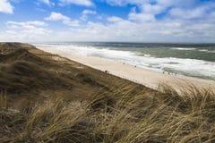 长的沙滩在北部欧洲 库存照片