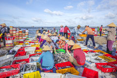长的海氏海滩,鱼市 免版税图库摄影
