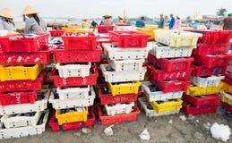 长的海氏,越南- 2016年7月03日:在塑料篮子的鲜鱼在长的海氏捕鱼港口 免版税库存图片