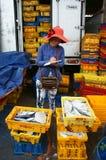 长的海氏,越南7月15日 免版税图库摄影