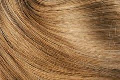 长的白肤金发的人的发光的头发 免版税图库摄影