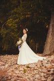 长的礼服的美丽的新娘 库存照片