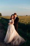 长的米黄礼服在地面上传播在huggung夫妇附近 免版税库存图片