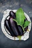 长的紫色茄子 免版税库存照片