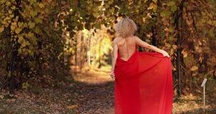 长的红色礼服的美丽和性感的白肤金发的妇女走在秋天公园的 影视素材