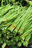 长的豆在市场上 库存照片
