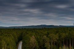 长的路到有daramtic天空的绿色森林里 免版税库存照片