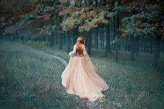 长的轻的昂贵的豪华礼服的神奇夫人有沿森林道路的长期落后的火车奔跑的,新的灰姑娘 免版税库存图片