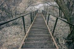 长的金属梯子,步在有下落的棕色叶子的公园 延迟秋天 秋天,乡情,方式的概念 免版税图库摄影