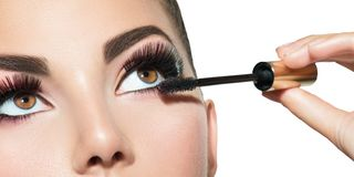 长的鞭子特写镜头 应用在她的眼睛的美丽的妇女染睫毛油 免版税库存照片