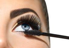 长的鞭子特写镜头 应用在她的眼睛的美丽的妇女染睫毛油 库存照片
